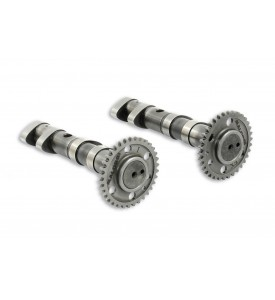 DOUBLE POWER CAM CAMSHAFT